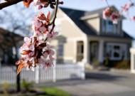 Spring Arrivals Housing